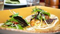 Soft Tacos with Prawns, Green Mango, Jicama and Fragrant Herb