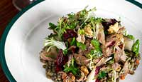 Confit duck salad with lentils in sherry vinaigrette, mustard fruits & walnuts