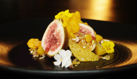 Fresh fig, yoghurt sorbet, mandarin & leatherwood honey granita, pistachio granola