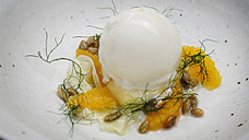 Frozen Curd, Mandarin & Fennel
