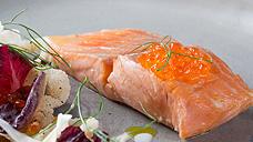 42° Confit Huon Salmon, witlof, fennel, citrus, butter sauce