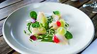 Cured Kingfish, Herb Emulsion, Celtuce & Pomelo