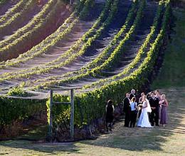 Hobart wedding reception venues hobart weddings receptions for Asia asian cuisine richmond hill menu